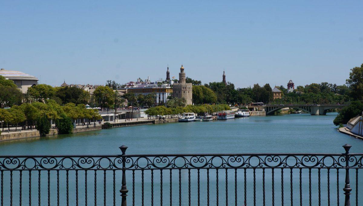 Curso Técnico de Turismo - Visita a Sevilha 10